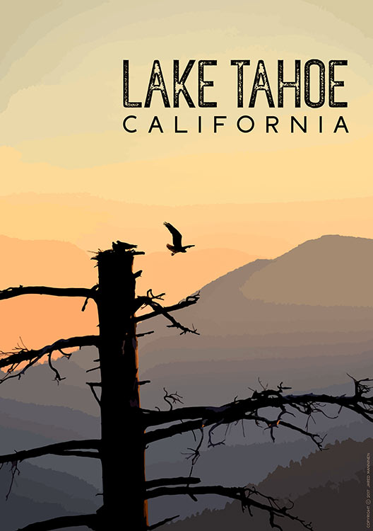 Osprey Taking Flight During Sunrise at Lake Tahoe, CA (poster)