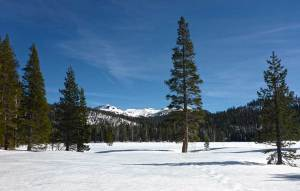 View of Stevens Peak from snow-covered Big Meadow Trail