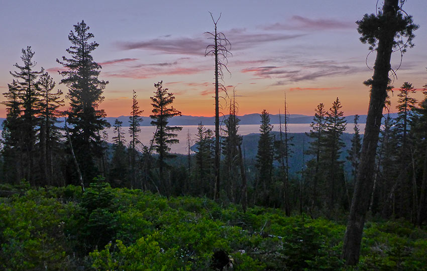 Saturated sunset over Lake Tahoe with silhouetted trees