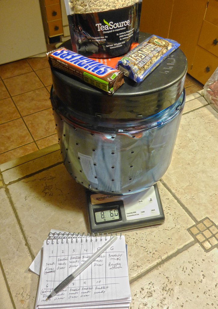 Bear vault filled with food on top of a postal scale