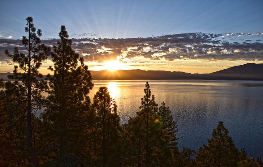 Sunrise at Lake Tahoe with Jeffrey Pine Trees