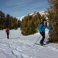 Backcountry Skiing on the Pacific Crest Trail