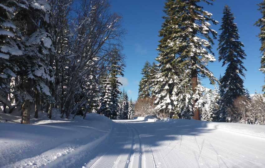 Blue skies and beautifully groomed cross-country ski tracks
