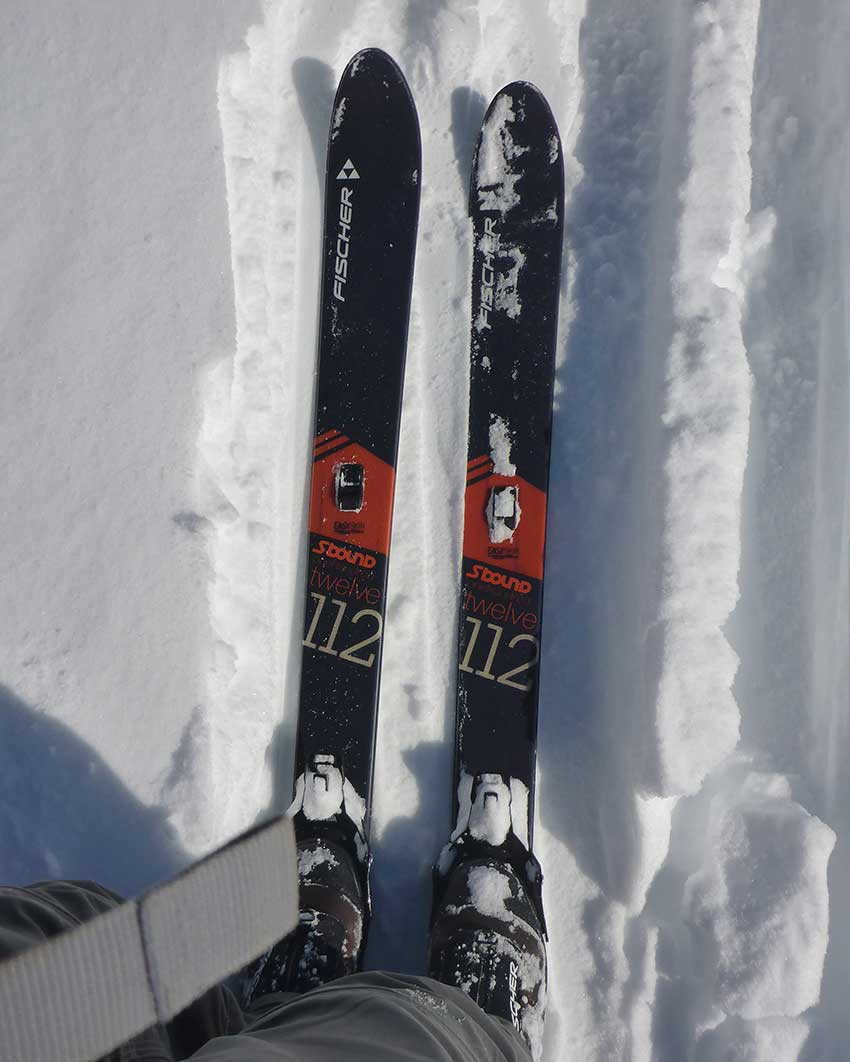Cross-country skis in the snow