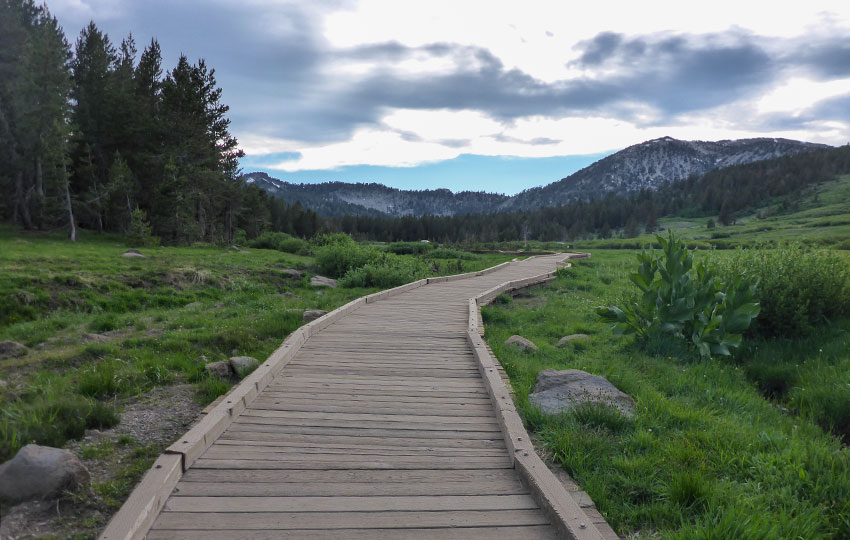 Wooden walkway through meadows and mountains