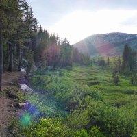 Hiking Tahoe Meadows (via Mount Rose HWY/SR 431 near Incline Village, NV)