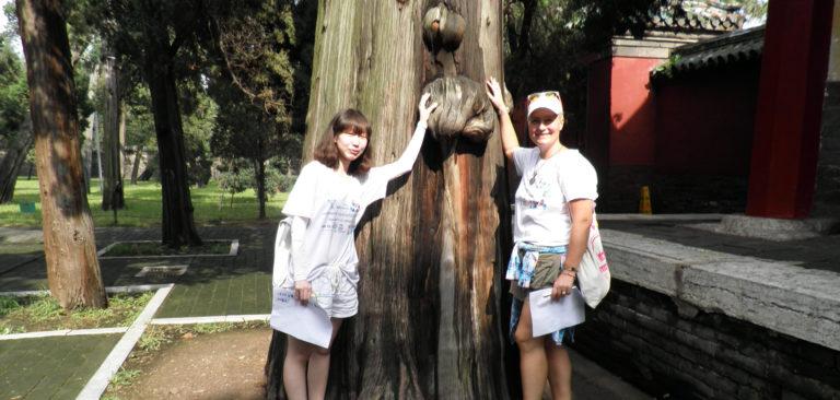 Disanje, Tai chi u Beogradu