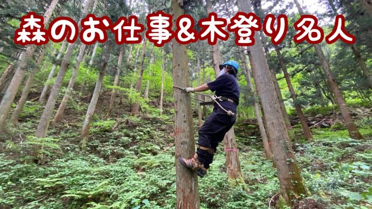 (1日7)森のお仕事_木のぼり名人