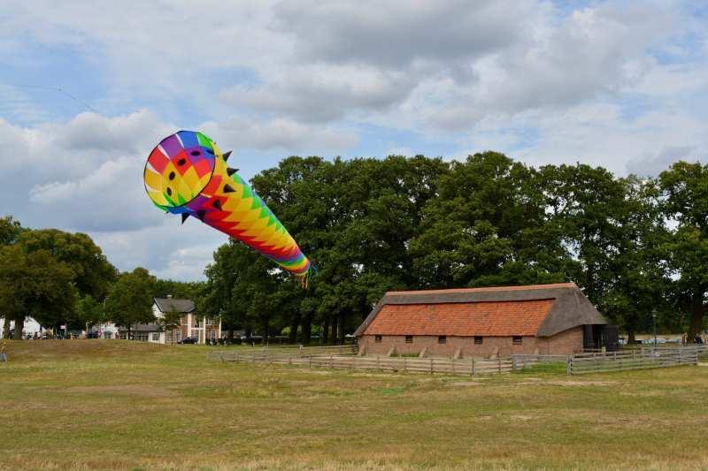 Vrij vliegeren: Ginkelse Heide – Ede (NL) 2019