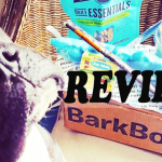 @BARKBOX AUGUST ARRIVED! Ahoy, matey! #REVIEW {+} #PROMOCODE