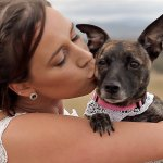 Dogs in Weddings: Alyce & Nathan Wedding Day