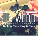 Six Tips to Include Your Dog in Your Wedding Day!