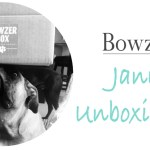 PAWS UP! The First Bowzer Box of 2015 Arrived!