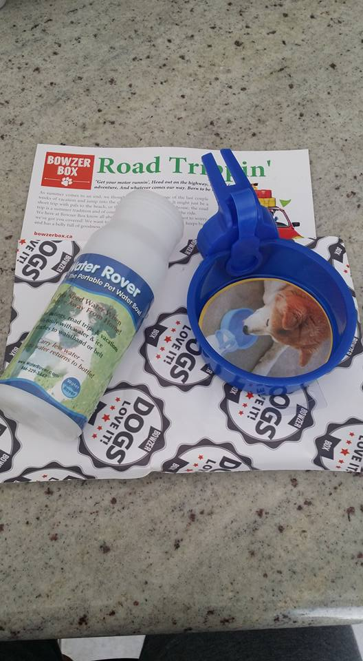 Bowzer Box Review Road Trippin' Edition: Water Rover valued
