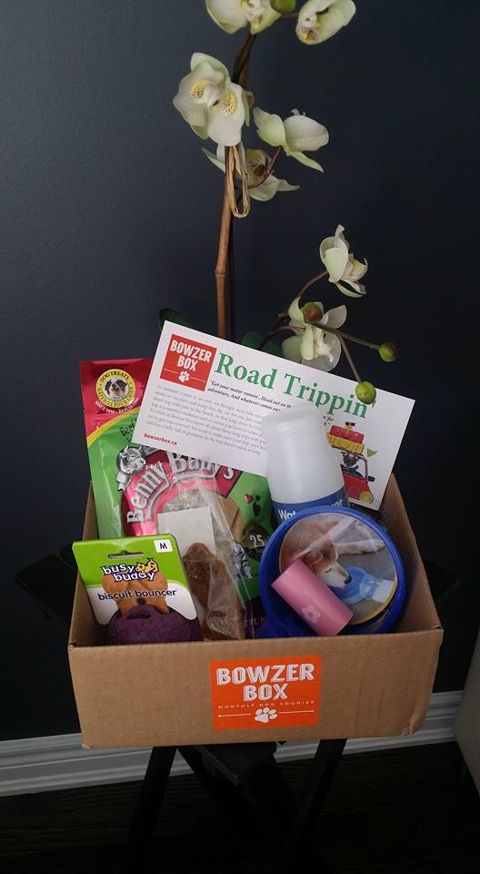 Bowzer Box Review August 2015 Road Trippin' Edition