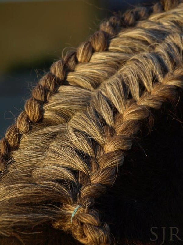 30 Amazing Horse Tail Braids Ideas to make Your Friends Jealous     30 Horse Tail Braids Ideas 28