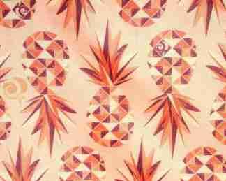 PUL04 - Ananas orange