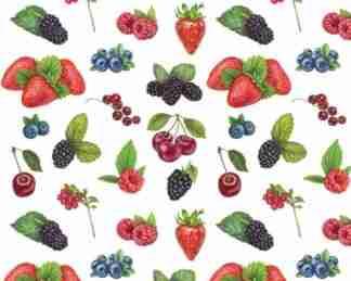 PUL27 - Petits fruits