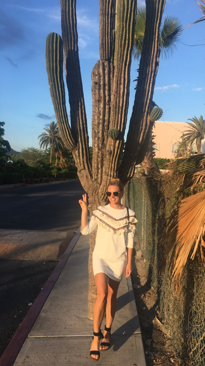 When in Mexico…🌵
