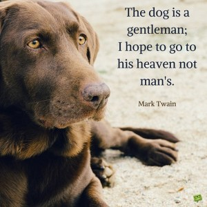 the-dog-is-a-gentleman-i-hope-to-go-to-his-heaven-not-mans-600x600