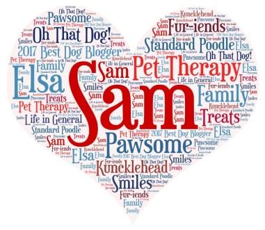 Sam Word Cloud