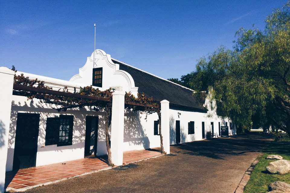 There is lots to do and see at Spier