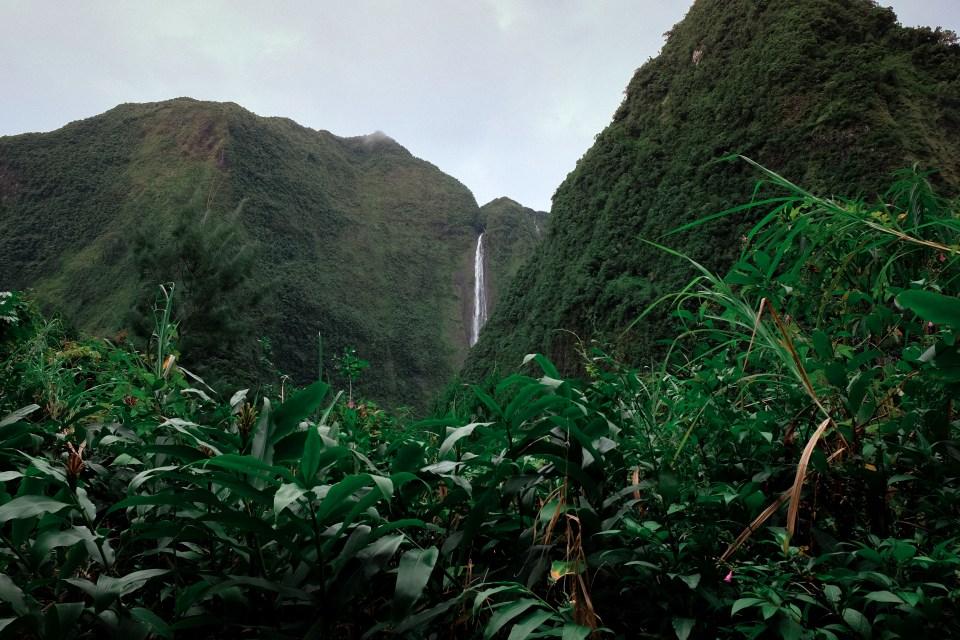 reunion island waterfall salazie
