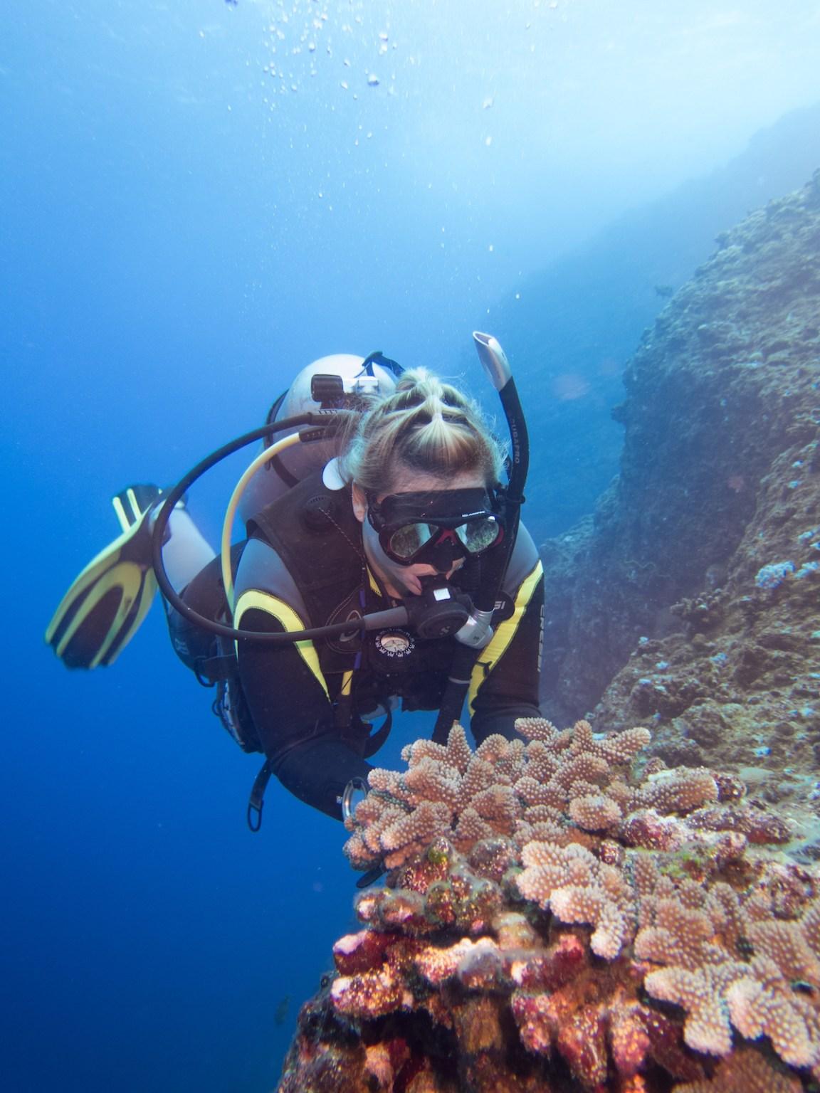 scuba diving mauritius dodo divers