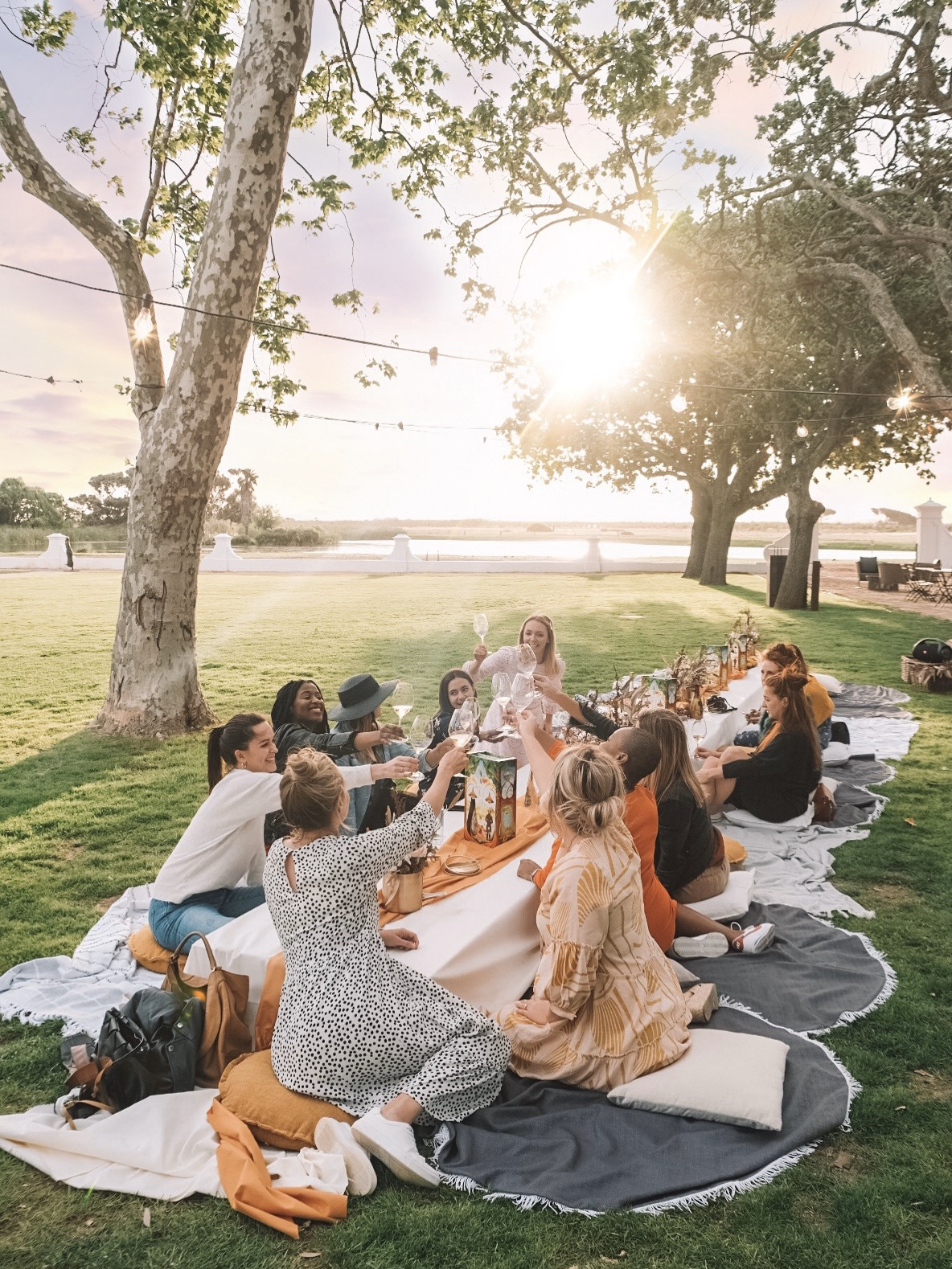 Vergenoegd Wine Estate Stellenbosch Picnic