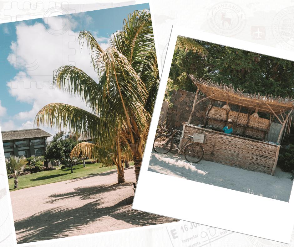 zilwa attitude hotel mauritius north coast