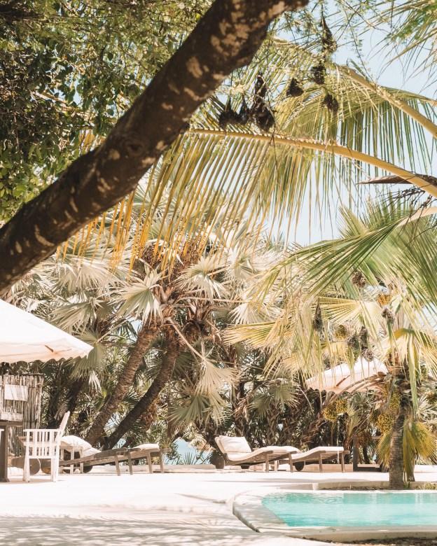 majlis resort manda bay lamu island kenya