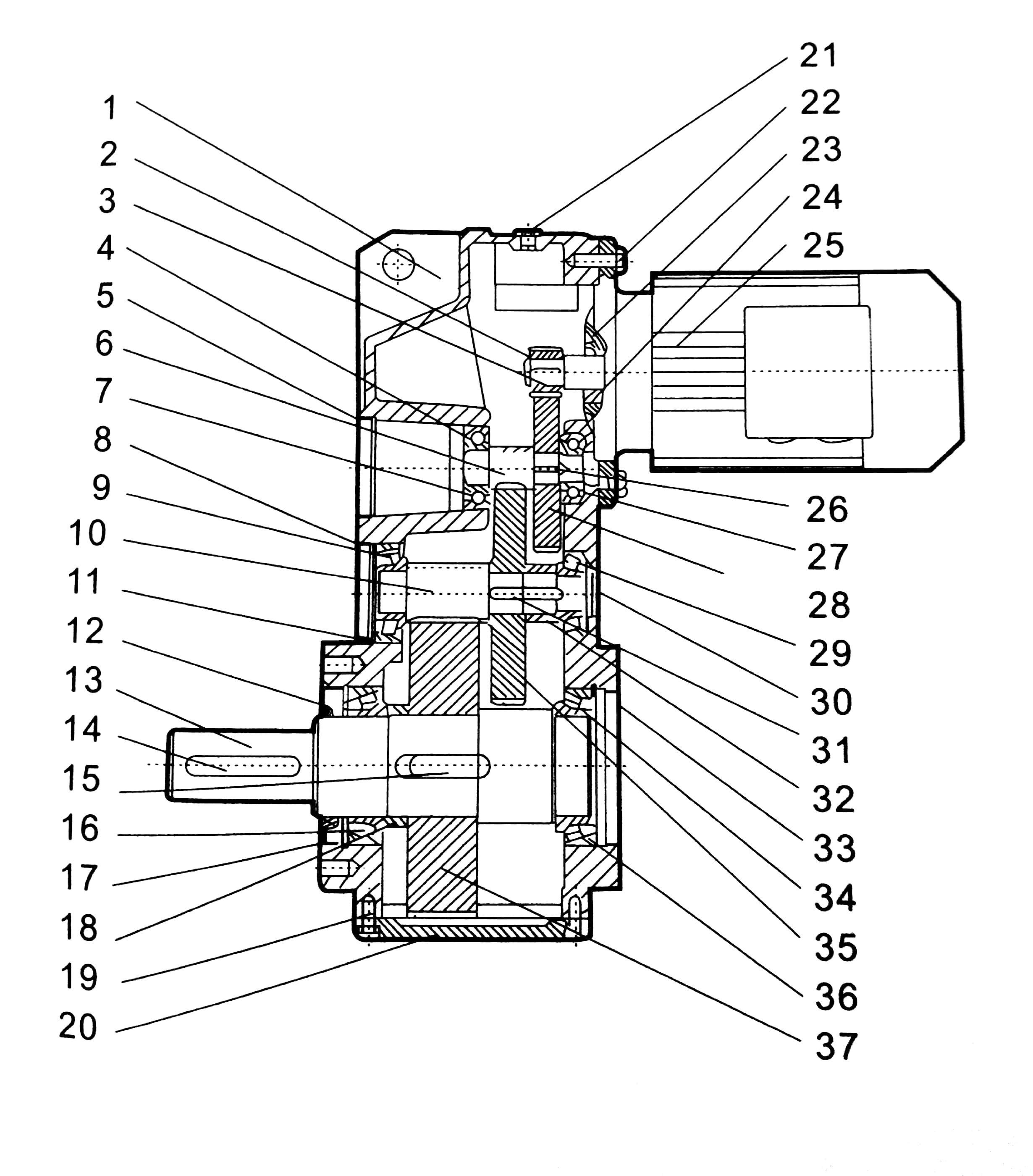 Parallel Shaft Helical Gear Motor