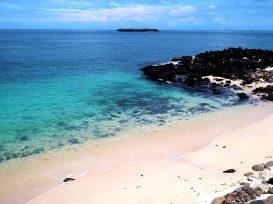 姑婆嶼 ビーチ