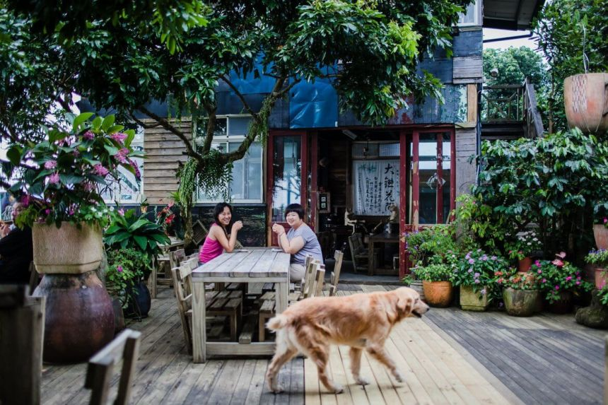 Café on the Dongshan Coffee Highway