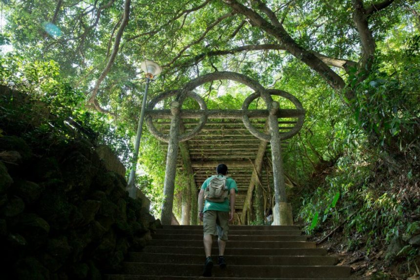 Going for a hike in Yangming Park