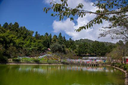 Taiwan Scene_Mt. hehuan_Small Swiss Garden