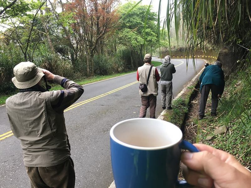 Taiwan Scene_Birdwatching_birdwatchers in Taiwan