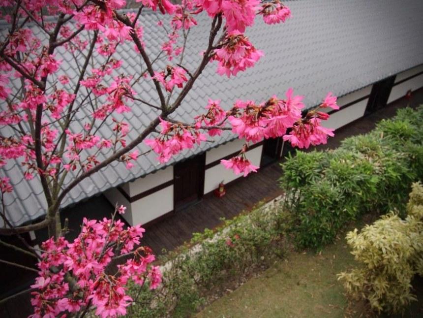 taiwan-scene-beitou-hot-spring-marshal-zen-garden-3