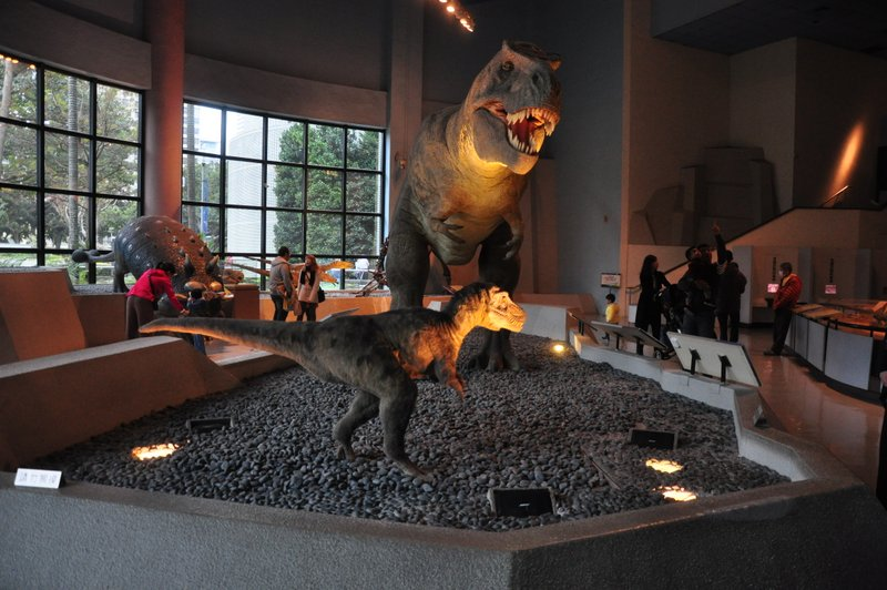 taichung-attraction-national museum of natural science-2