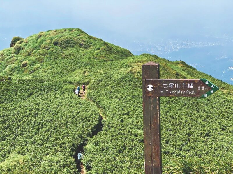 The highest peak of Taipei - Mt. Qixing - is also known for its winding trail surrounded by grassland.