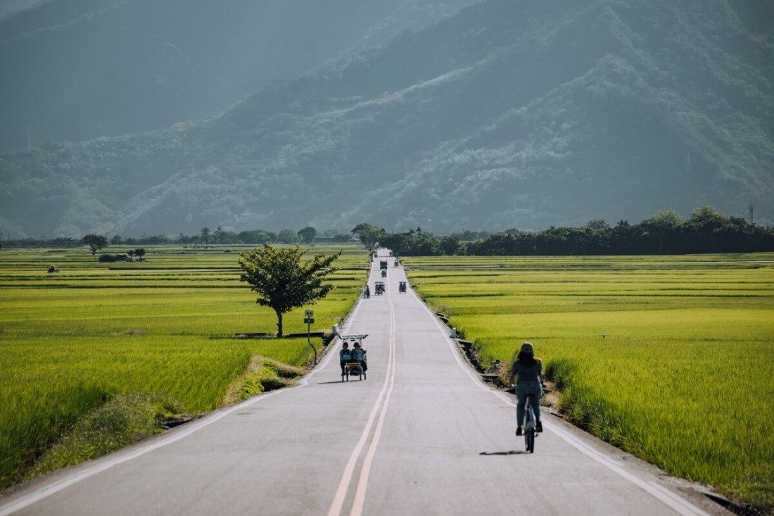 Brown Boulevard in Chishang, Taitung.
