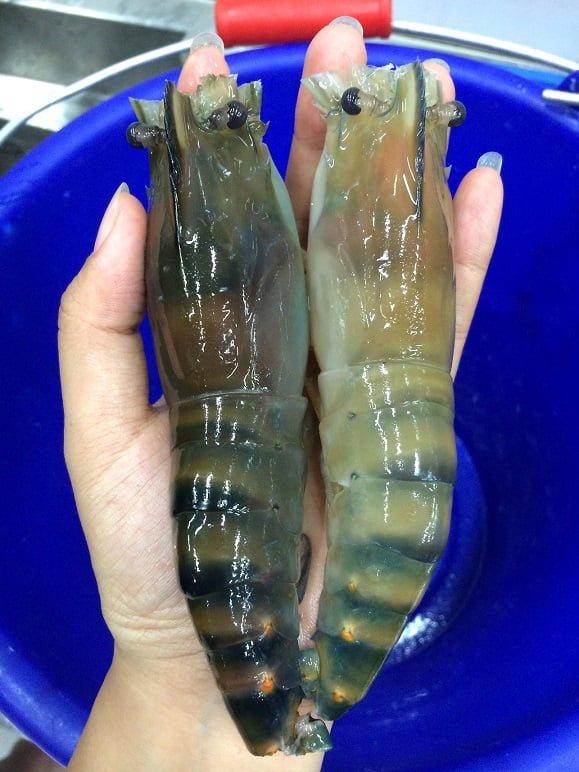 【台中。全國釣蝦場】大夥釣蝦聚餐打發時間的好去處