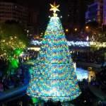 柳川水岸步道水上聖誕樹亮起來,最水聖誕樹是夢幻七彩顏色~