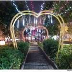台中新燈會開幕囉!!夜晚的美麗燈海就在十九甲健康公園~