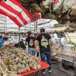 熱血採訪│台中野生烏魚子肉粽,大排長龍只等這一味,每日限量賣完為止的鯊魚挑嘴