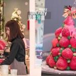 熱血採訪│這裏勿瘋!台中超浮誇草莓瘋了!整個草莓堆成山高的,根本是聖誕樹,偷偷說還有正妹店員!