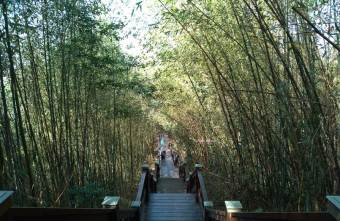 2021 02 23 085704 - 鳳凰山登山步道。台中平緩悠閒好走親子步道,人少竹林多,假日健行親近山林好去處