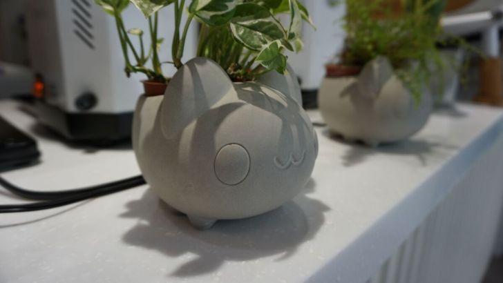 2021 03 31 020356 - 透天白色奶泡貓咖啡館好好拍,咖波迷快來找奶泡貓一起喝下午茶!