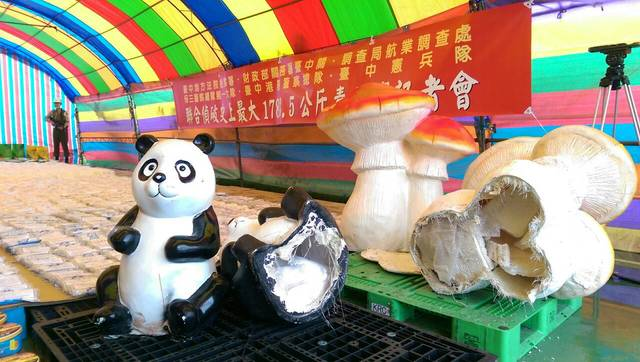 Pandas used to smuggle drugs into Taiwan