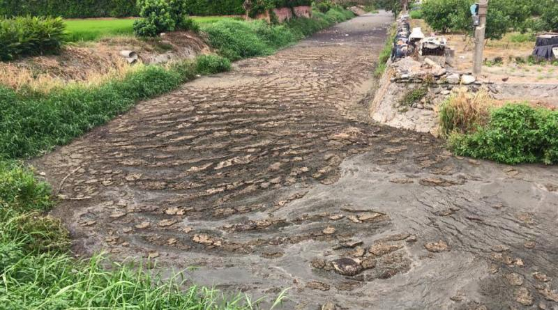 River of raw manure in Pingtung County April 2, 2017